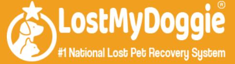 lost my doggie