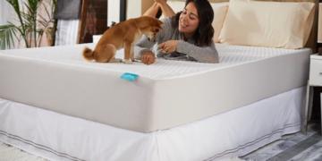 twin xl luma mattress